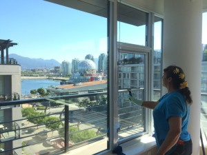 Renovation Window Cleaning